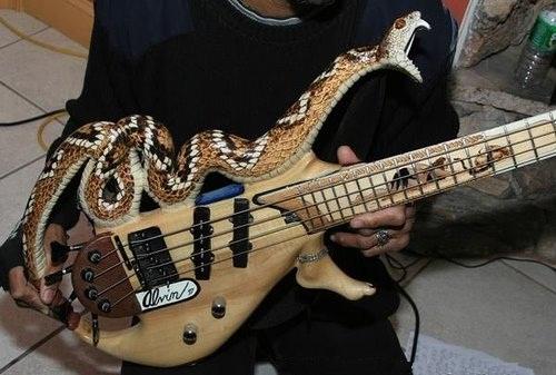 Snake-Guitar-9031