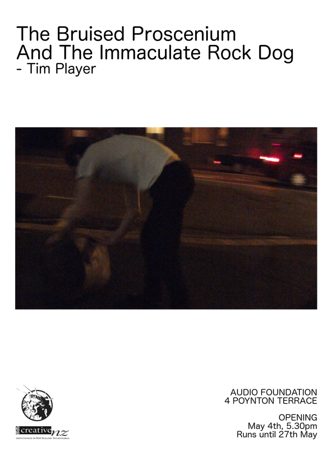 tim play poster